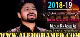 Shujat Abbas Nohay 2018-19