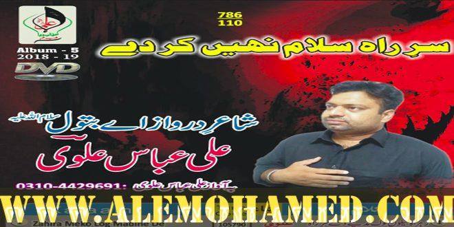Ali Abbas Alvi Nohay 2018-19
