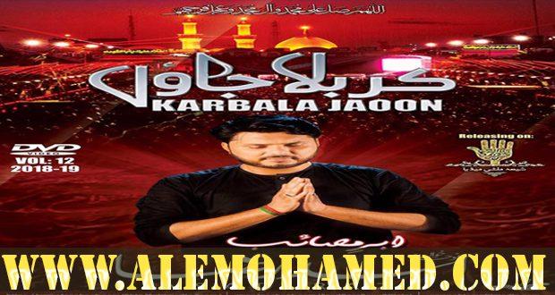 Asad Abbas Nohay 2018-19