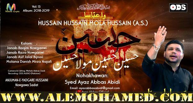 Ayaz Abbas Abidi Nohay 2018-19