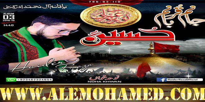Haider Raza Nohay 2018-19