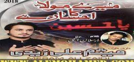 Mesum Ali Zaidi Nohay 2018-19