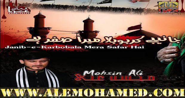 Mohsin Ali Nohay 2018-19