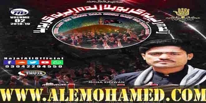 Najaf Ali Nohay 2018-19