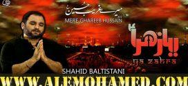 Shahid Baltistani Nohay 2018-19
