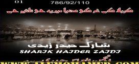 Sharik Haider Zaidi Nohay 2018-19