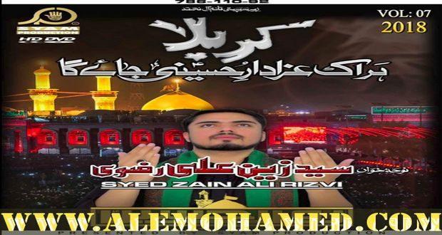 Zain Ali Rizvi Nohay 2018-19