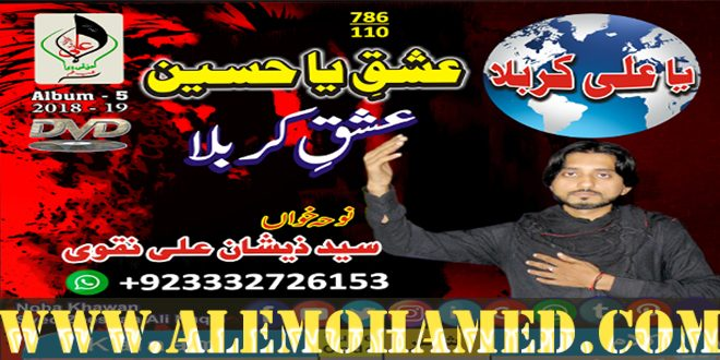 Zeehsan Ali Naqvi Nohay 2018-19