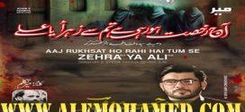 Mir Hasan Mir Ayyam-e-Fatima Nohay 2019-20