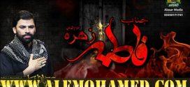 Shadman Raza Ayyam-e-Fatima Nohay 2019-20