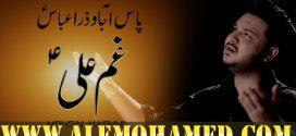 Mohsin Raza Hashmi Ayyam-e-Ali Nohay 2019-20
