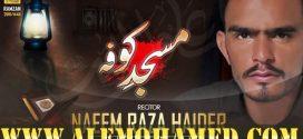 Naeem Raza Haider Ayyam-e-Ali Nohay 2019-20