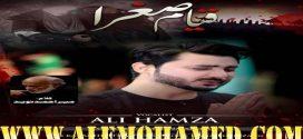 Ali Hamza Nohay 2019-20