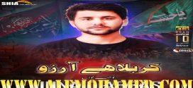 Junaid Abbas Nohay 2019-20