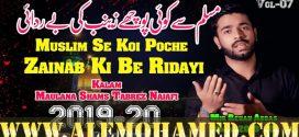 Mir Rehan Abbas Nohay 2019-20