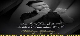 Mohsin Raza Hashmi Nohay 2019-20