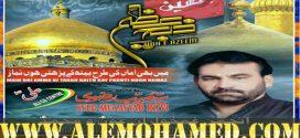 Musayyab Rizvi Nohay 2019-20