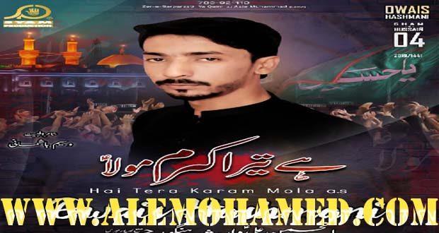 Owais Hashmani Nohay 2019-20