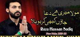 Raza Hasan Sadiq Nohay 2019-20