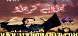 Zaheer Abbas Kazmi Nohay 2019-20
