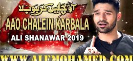 Ali Shanawar Nohay 2019-20