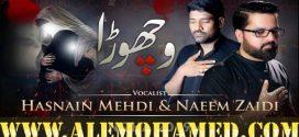 Naeem Zaidi & Hasnain Mehdi Nohay 2019-20