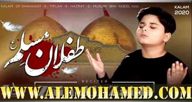 Syed Zain Ali Zaidi Nohay 2020-21