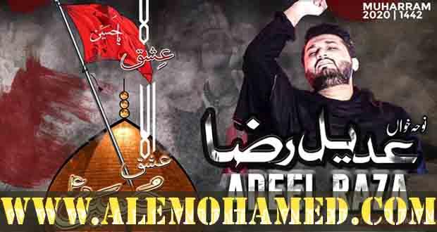 Muhammad Adeel Raza Nohay 2020-21